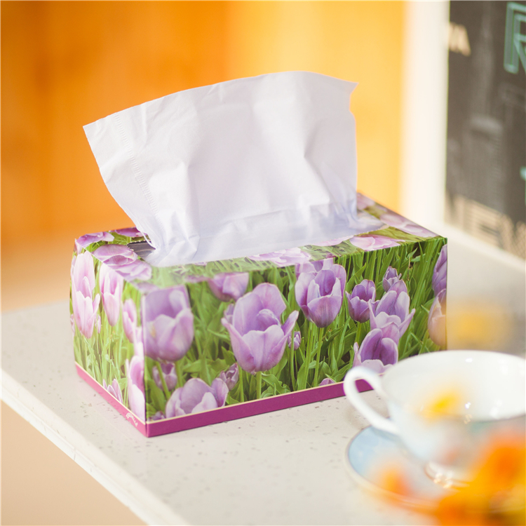 2 ply 200 sheets virgin wood box facial tissue